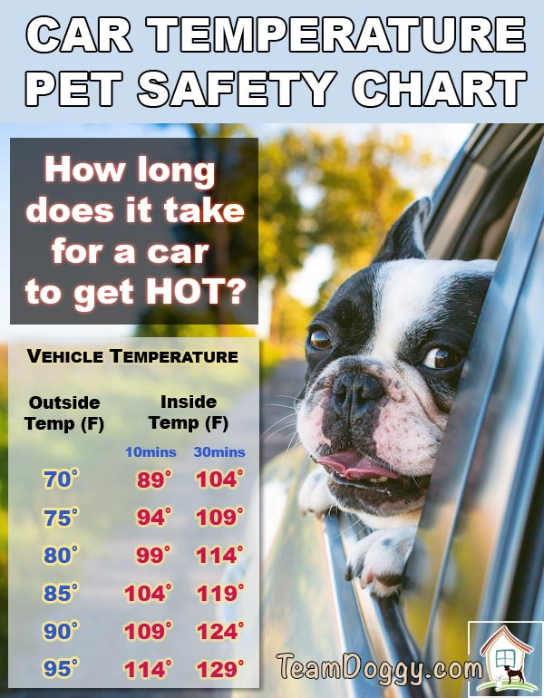 pet safety chart for car temperatures