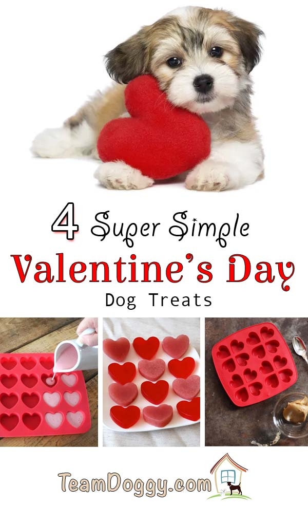 4 Simple Valentine's Day dog treats you can make to show your dog you love them #dogtreats #valentinesday #diy