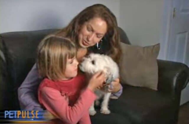 Maya and her family meet her new therapy dog