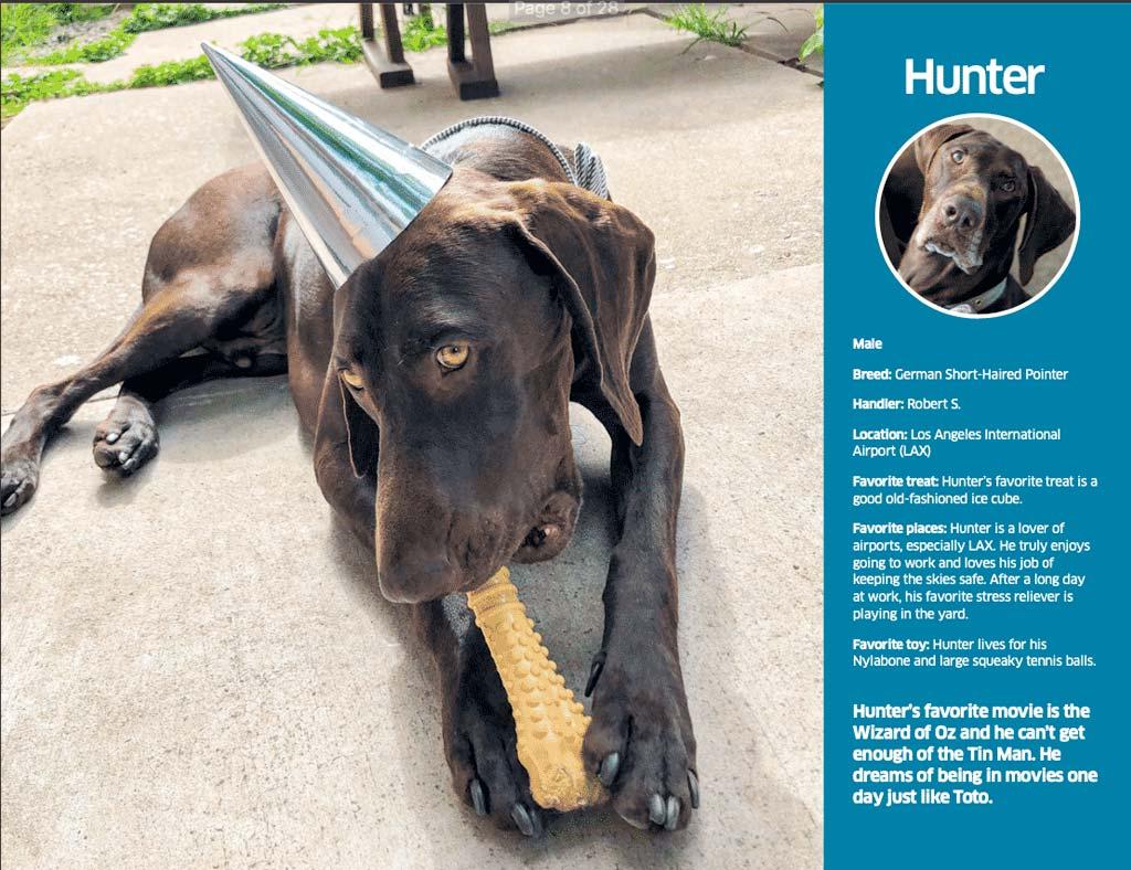 Hunter keeps everyone safe at LAX